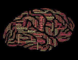 De dingen die ons 'domme' brein verzint
